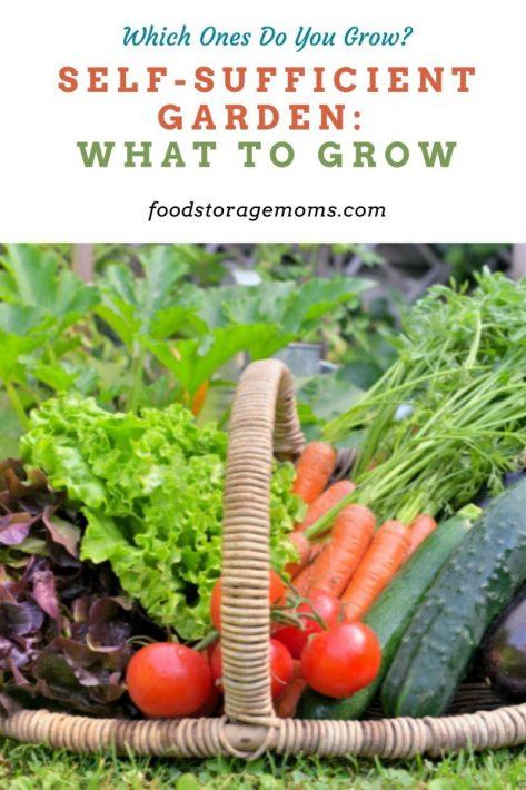 Jardín autosuficiente: qué cultivar