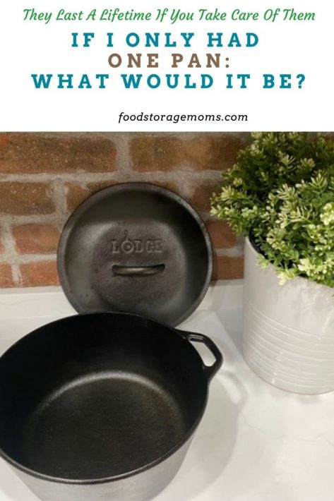 If I Only Had One Pan-What Would It Be?